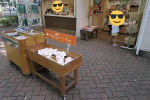 井の頭自然文化園に双子連れで行ってきました | お土産