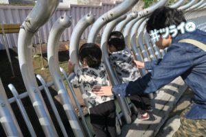 多摩動物公園に2歳の双子と行ってきたよ | ライオン・アフリカゾウ・キリンなど