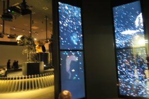 大地のハンター展 国立科学博物館 常設展
