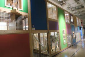 国立科学博物館 コンパス 閉鎖